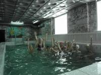 Мечтатели в бассейне!