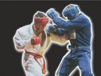 Чемпионат Кемеровской области по рукопашному бою